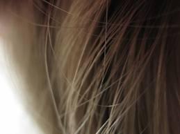 hairtexture