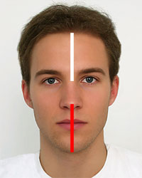 Face measurement